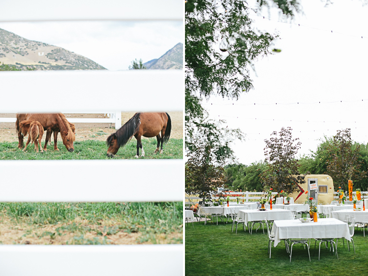 Backyard wedding 12