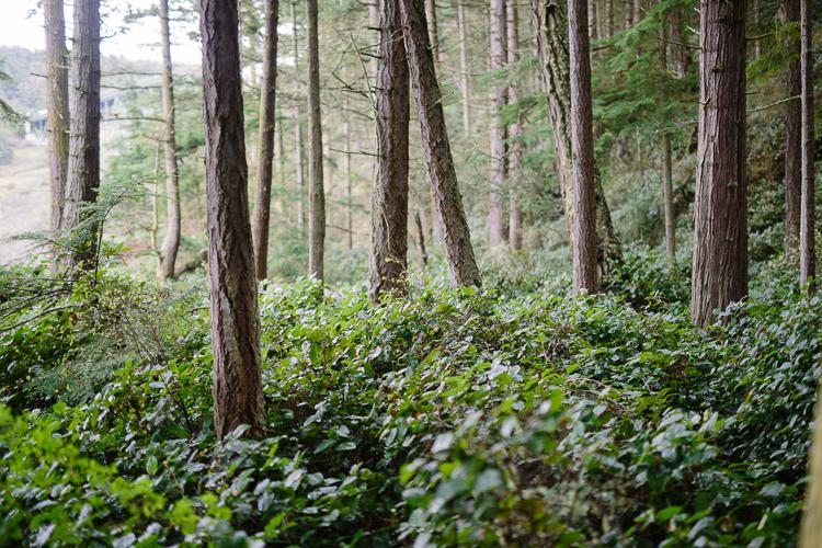 Seattle Washington Photographer_37